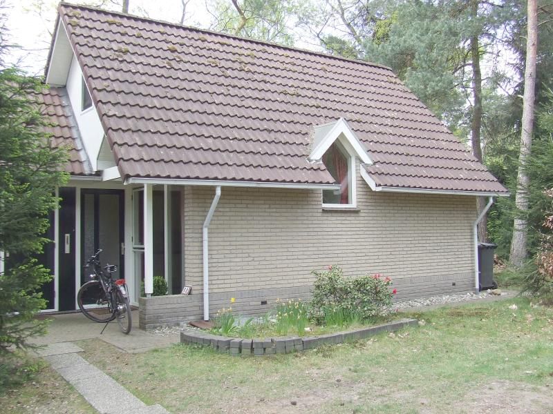 Chalet in the woods, in the East of the Netherlands - Image 1 - Holten - rentals