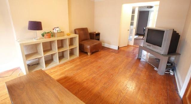 Living Room - Charming 2 Bedroom Duplex with Garden - Brooklyn - rentals