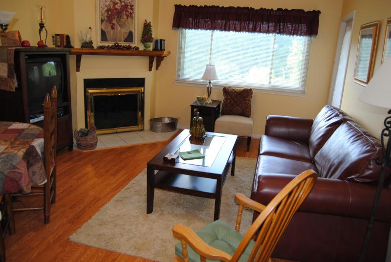 Newly Up-Dated Living Room- Leather sleeper sofa - Best Mountain View and  Ski Slopes $89 a night - Gatlinburg - rentals