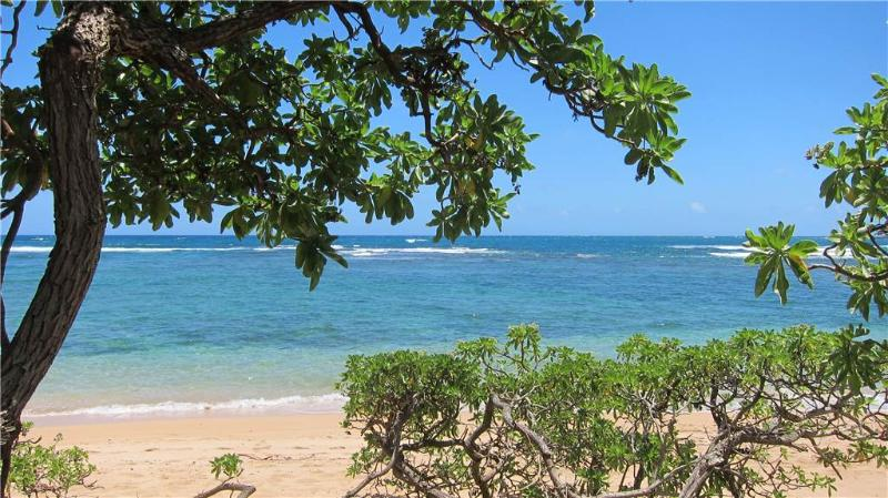 Hale Makai-BEACHFRONT, AC IN Bedrooms! - Image 1 - Anahola - rentals