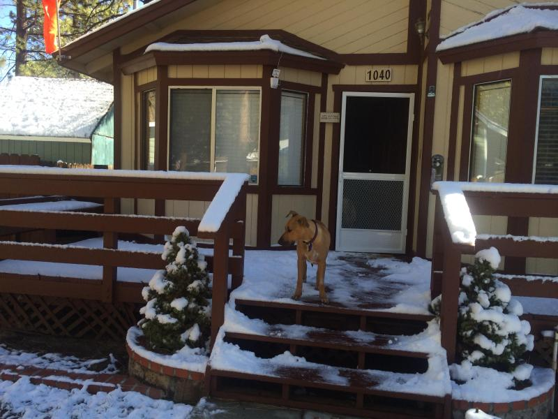 Cabin Front-Winter - DOG FRIENDLY-Flying Bear Cabin A Pilot's Paradise! - Big Bear City - rentals