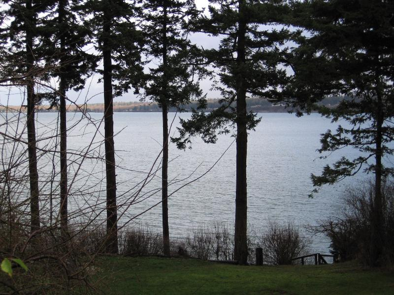 Water View - Seaside Cottage - Lummi Island - rentals