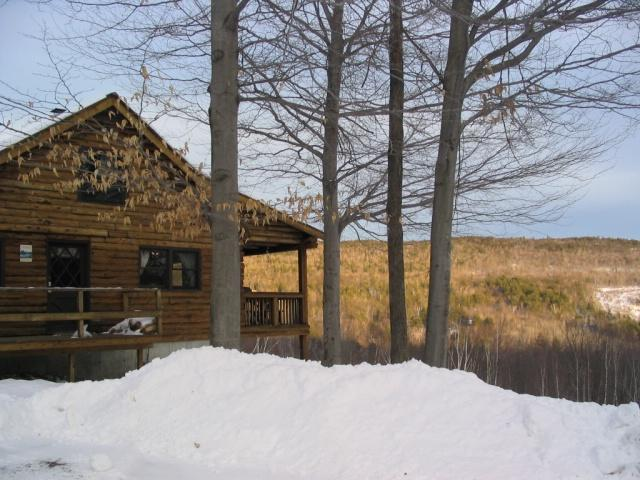 Mountain Top  Log Home - Image 1 - Bartlett - rentals