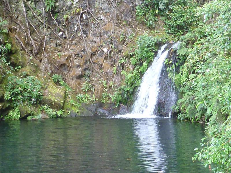 Swim Under your Mika Taki Waterfall - Magical Waterfall Estate - Mika Taki - In the Hear - Hilo - rentals