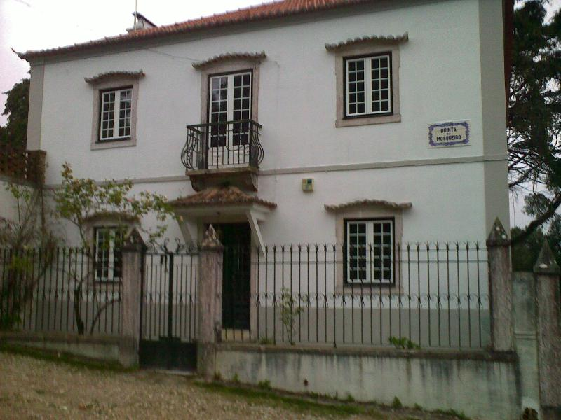 A Character Villa with Garden,Pool and Mini Spa - Relax near Lisbon! - Image 1 - Sintra - rentals