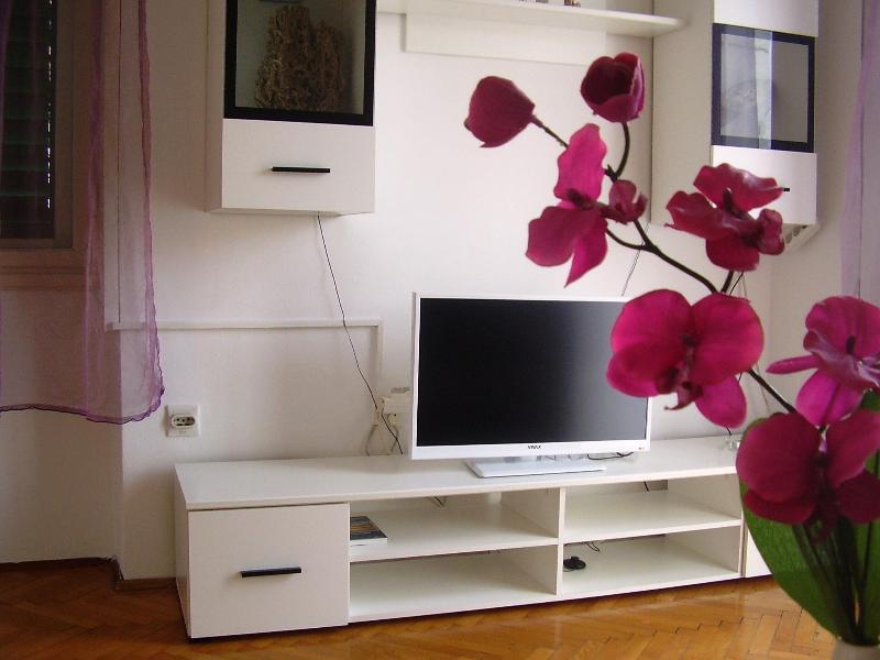 Large apartment in Split/Croatia -  apartment Orhideja - Image 1 - Split - rentals