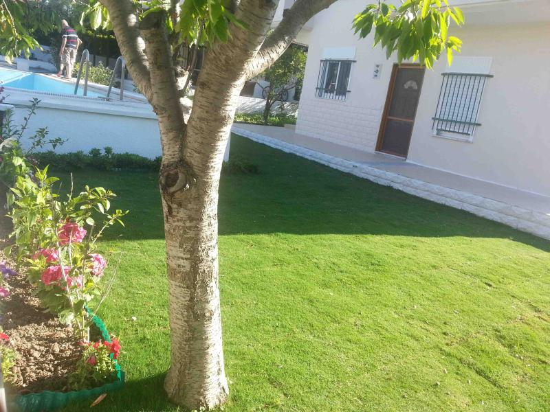 NEW FURNİSHİNG, NEW RENOVATİONS   140m2 villa with swimming pool ,and PRİVAT garden - Image 1 - Alacati - rentals