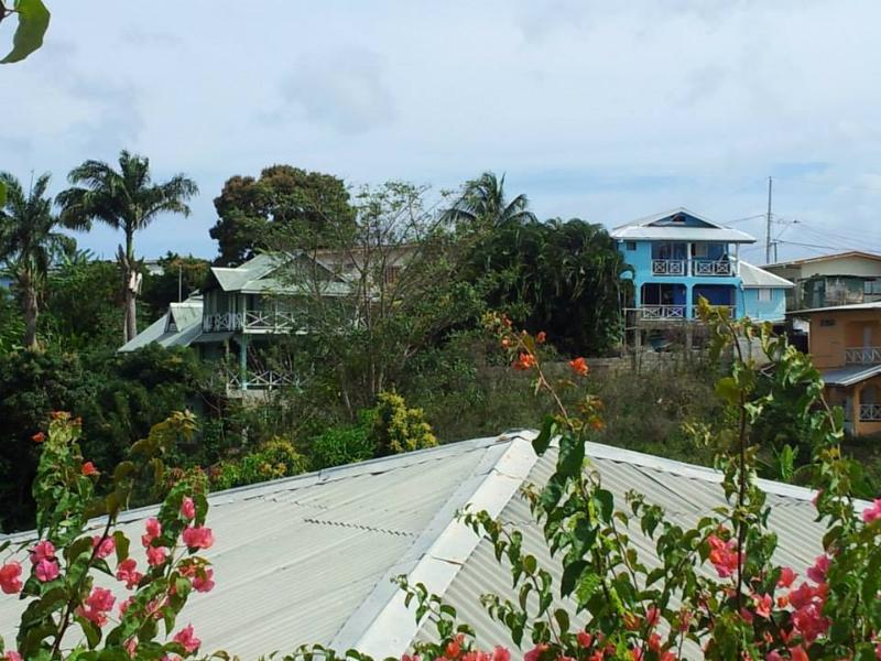 The view from the village to Onelovecottagetobago, the blue house on the right hand side - Onelovecottagetobago, Cheap Holiday Accommodation - Mount Irvine - rentals