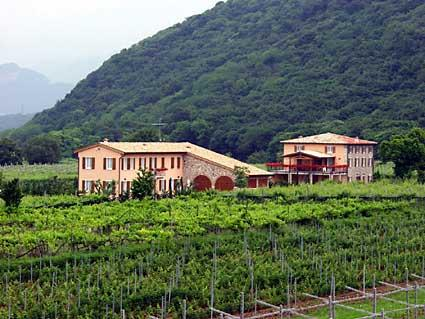 Ca' Vettor - Lake Garda - Image 1 - Affi - rentals