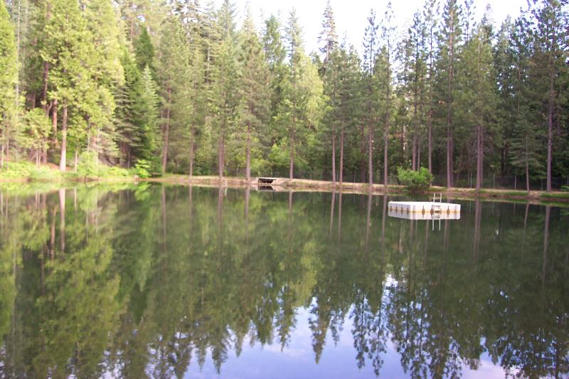 Sugar Pine Lake & swimming raft.  We are members in this private lake which has a lovely sandy beach - Enjoy summertime in the mountains! - Twain Harte - rentals
