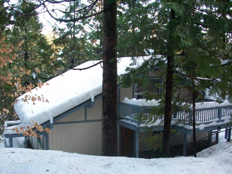 Winter View of the Cabin - Come play in the snow!  It's the best winter season in years!! - Twain Harte - rentals
