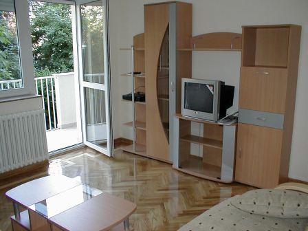 Living room - Apartment in Belgrade, Dedinje area - Belgrade - rentals