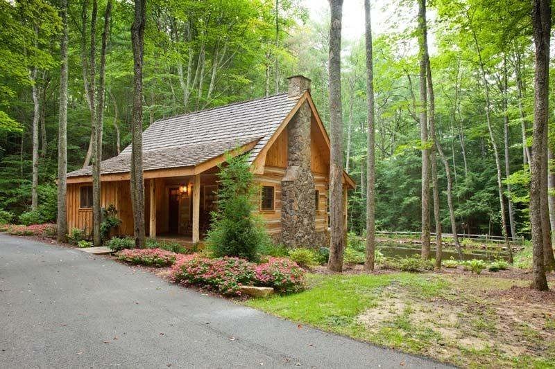 Cabin located directly on a private pond - Cold Mountain Pond - Blue Ridge GA - Blue Ridge - rentals