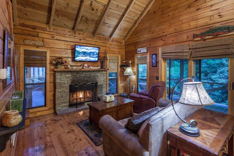Great Room with a wood burning fireplace and a 42 inch HD TV and a Blue Ray DVD player - 1 Bedroom Vacation Rental in Blue Ridge - Blue Ridge - rentals