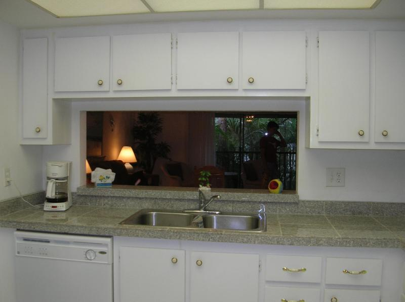 Kitchen - Beautiful Naples Florida Condo - Kings Lake Area - Naples - rentals