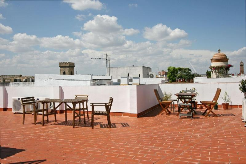 Columns Duplex Terrace and Patio Seville old town - Image 1 - Seville - rentals