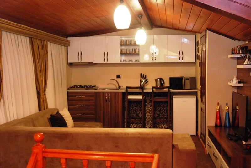 Pashas House Istanbul No:3 Cozy Apart in Sultanahm - Image 1 - Istanbul - rentals
