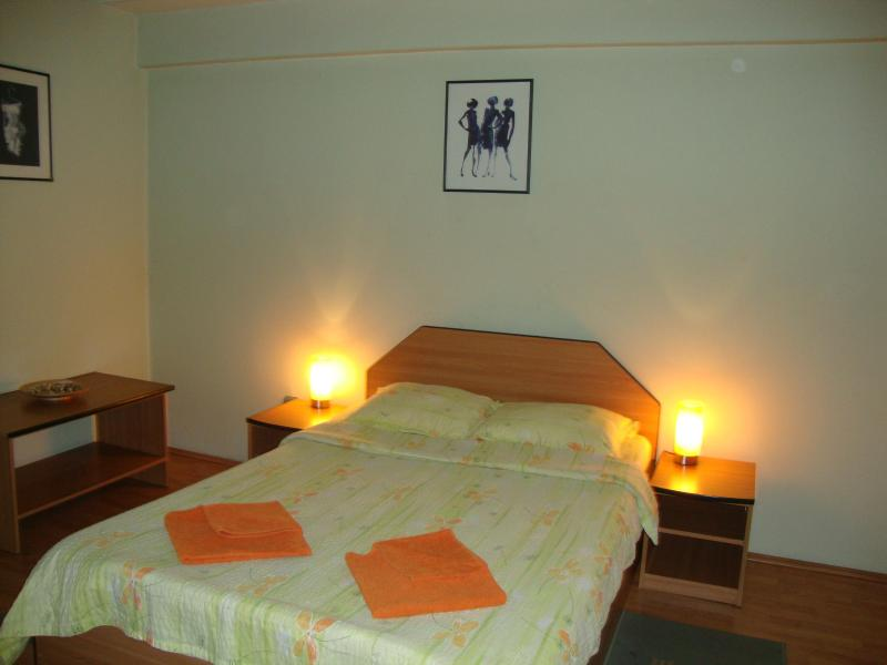 room view - Intimate studio near Athenaeum - Bucharest - rentals