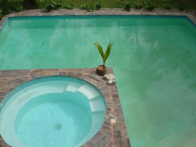 shared Pool - Beach House - Las Terrenas - rentals