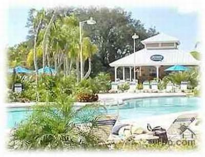 Our Swimming pool - 3 Bed 2 Bath- Palm House - Davenport - rentals