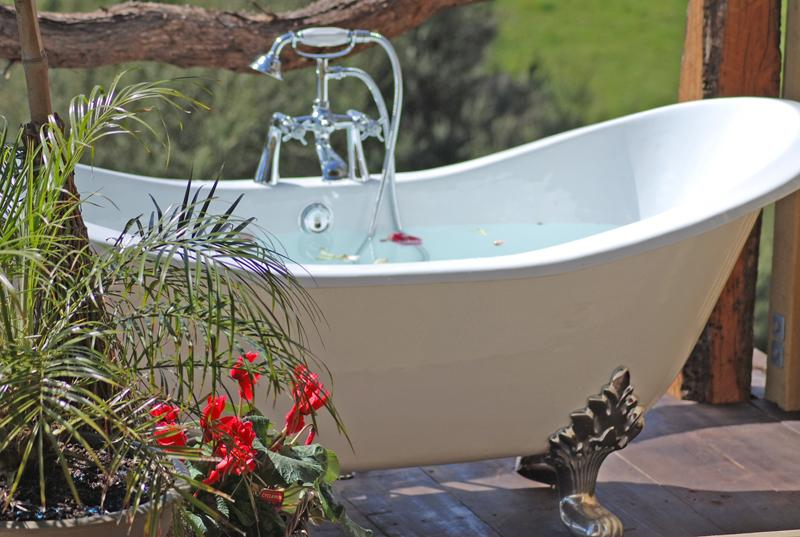 rose petal bath under the stars - ROSEBUD COTTAGE - ROMANCE -MIDWEEK SPECIALS! - Auckland - rentals