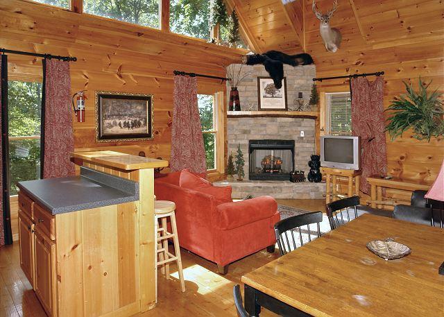 BEAR NAKED LODGE #216- Living Room & Fireplace - 2bedroom cabin Sky Harbor Gatlinburg/Pigeon Forge TN, game room, hot tub - Sevierville - rentals