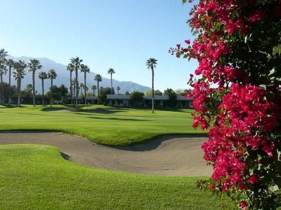 TWO BEDROOM CONDO ON EAST PORTALES - 2CJAC - Image 1 - Palm Springs - rentals