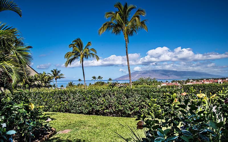 View from lanai, liv room & kitchen - Ocean View - Fresh Renovation -Steps to the pool & spa! - Kihei - rentals