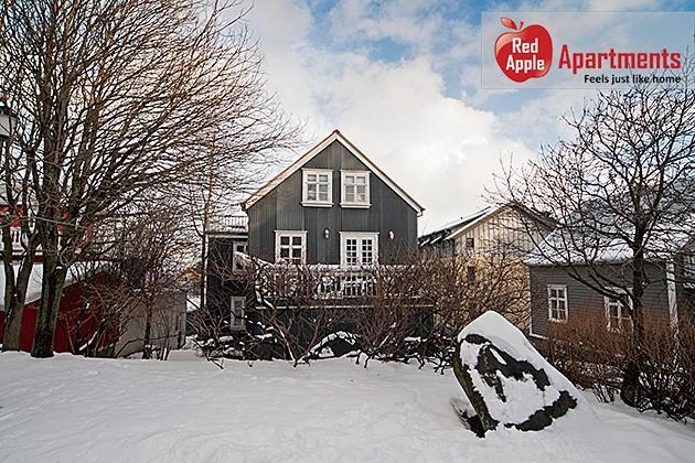 Studio Apartment in City Center - 56 - Image 1 - Reykjavik - rentals