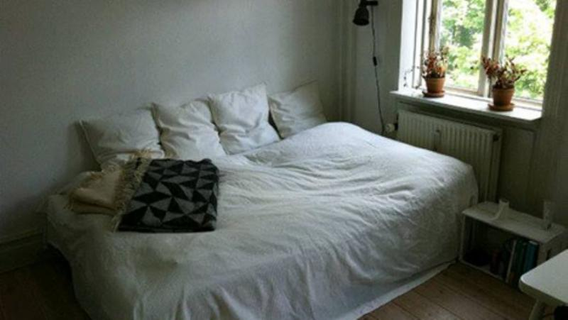 Moellegade Apartment - Nice bright one room Copenhagen apartment - Copenhagen - rentals