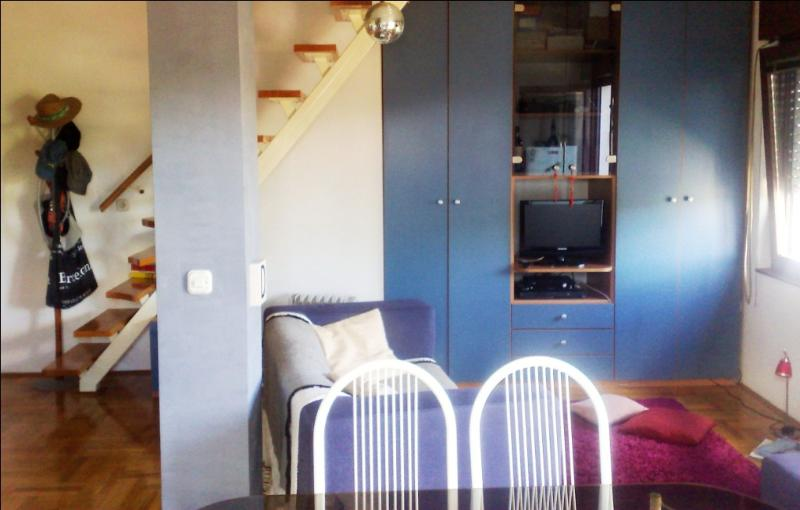 Cheap&Cosy Flat For Rent In Zagreb - Image 1 - Zagreb - rentals