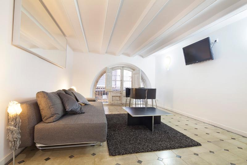 LIVING ROOM - Gotico Imperivm - Barcelona - rentals