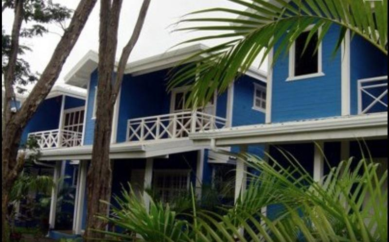 The cabins, look for the bright blue (azul) - Tamarindo Cabins #3---5 minute walk to beach! - Tamarindo - rentals