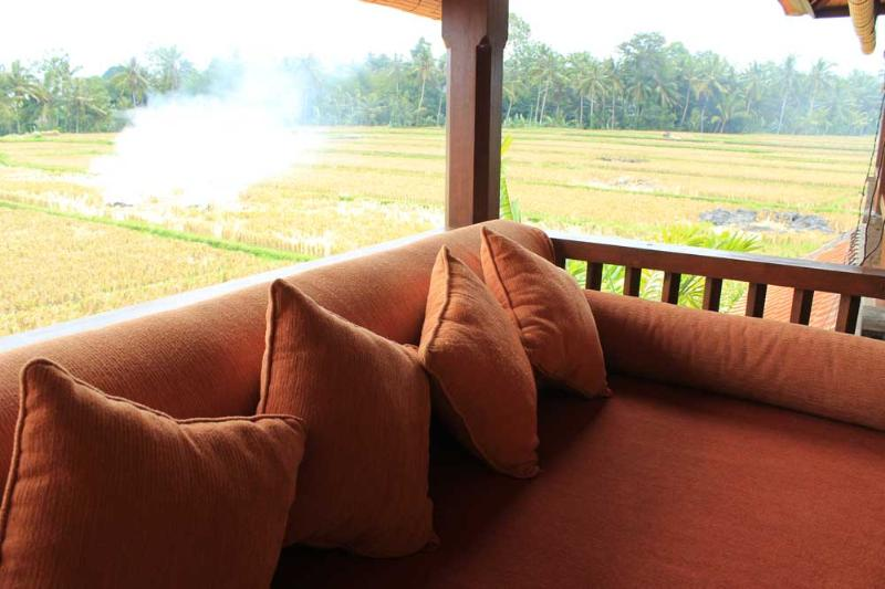 View from balcony - Two Bed Room Pool Villa Rental in The Rice field - Ubud - rentals