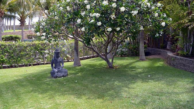 Casa Kristina - Image 1 - Cabo San Lucas - rentals
