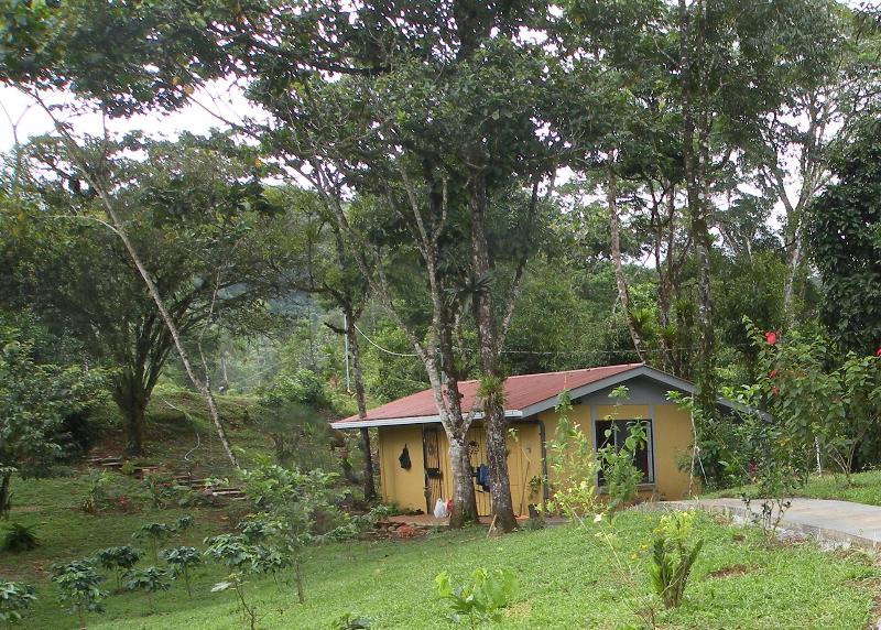 Cabina Colibri-Hummingbird Cabin - Cabina Colibri-Hummingbird Cabin-Alajuela Province - Alajuela - rentals