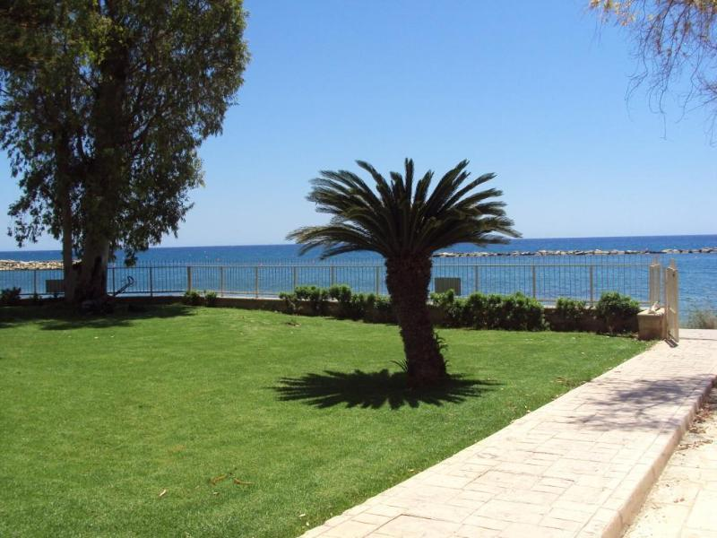 Rent flat on the beach - Image 1 - Limassol - rentals