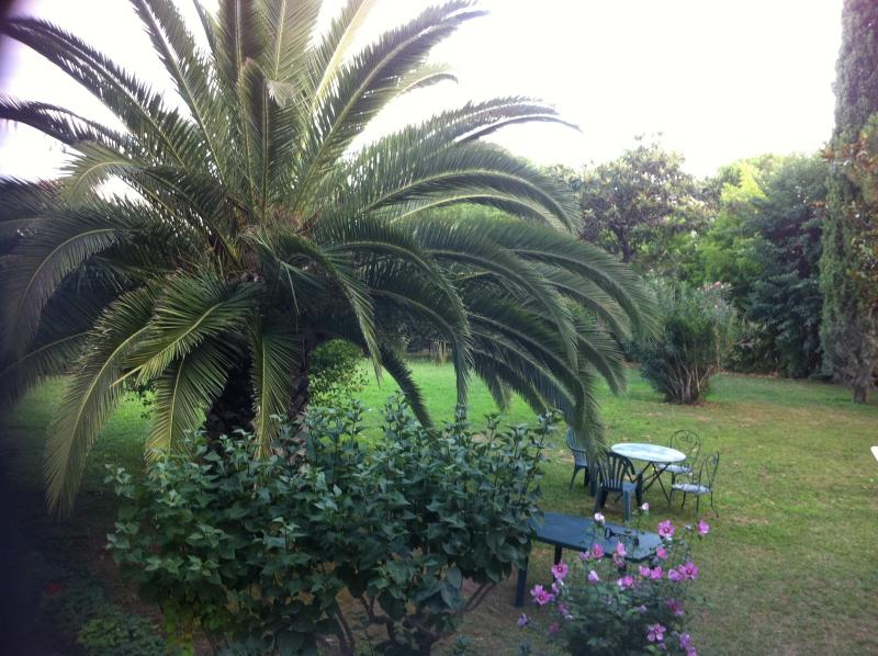Garden - LAVAGANCE B&B at MONTPELLIER - FRANCE - Montpellier - rentals