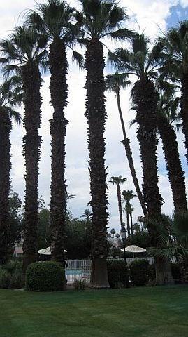 ALP114 - Rancho Las Palmas Country Club - 2 BDRM, 2 BA - Image 1 - Rancho Mirage - rentals