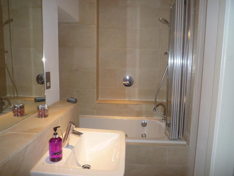 Bathroom - Luxury city centre apartment - Carluke - rentals