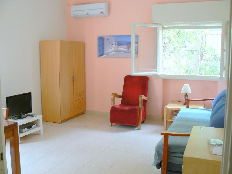 living room - Bright rehavia 1 bedroom apt 4 - Jerusalem - rentals
