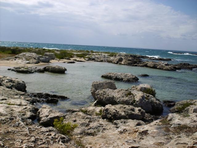 Frascone Porto Selvaggio - Nardò Puglia House  elegant Natural Park - Nardo - rentals