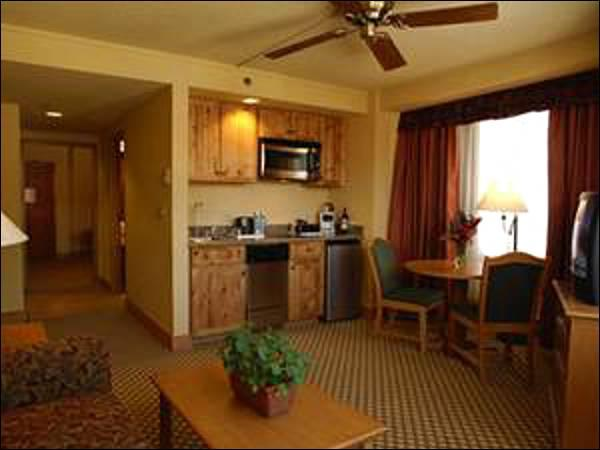 Kitchenette, TV, and Sleeper Sofa In the Unit - Affordable, Centrally Located Accommodations - Great On-Site Amenities (1301) - Crested Butte - rentals