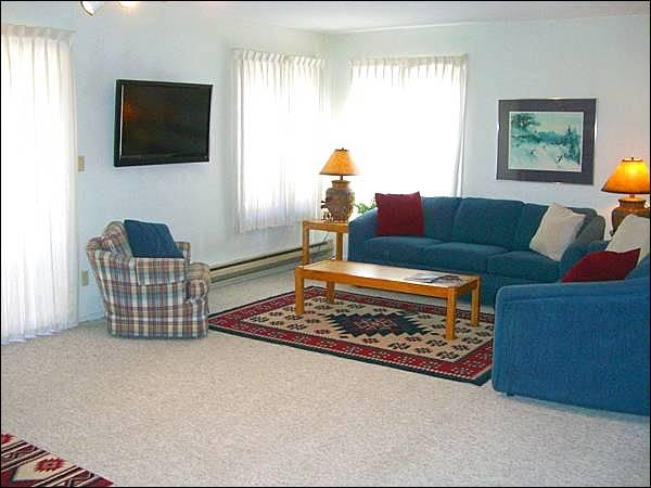 Bright and Sunny Living Room Boasts a Flat-Screen TV - Cozy Mountain Condo - Ideal for a Small Family (1315) - Crested Butte - rentals