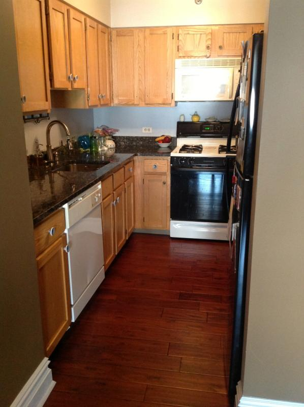 granite counter tops. dishwasher and microwave. - LARGE, NEW,  2 bed, 2 bath. Walk to Central Park. - New York City - rentals