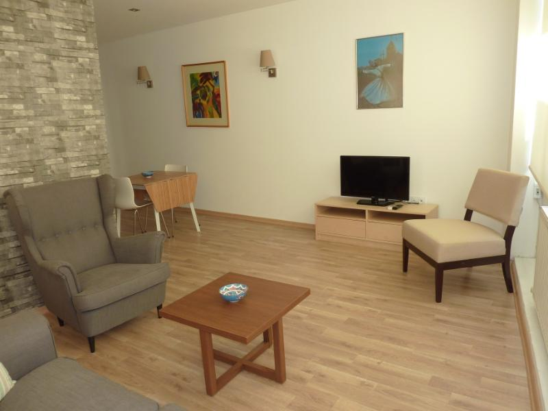 Living room - Spacious, Best location,Taksim- Pera, Apartment - Istanbul - rentals