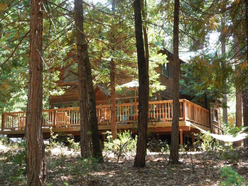 Front of cabin from street - Twain Harte Cabin, Sleeps 10 - Twain Harte - rentals