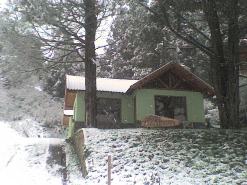 vista en invierno (con un poquito de nieve) - Barrio tranquilo a 5' del centro - San Martin de los Andes - rentals