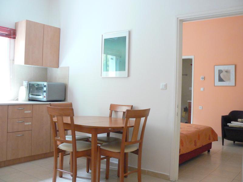 living room - Charming Rehavia 1 bdr apartment (5) - Jerusalem - rentals