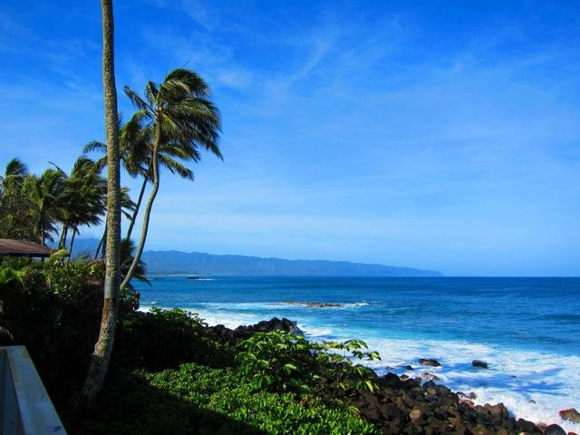 View from house into Waimea Bay - Waimea Bay Ocean Front House, North Shore of Oahu - Haleiwa - rentals